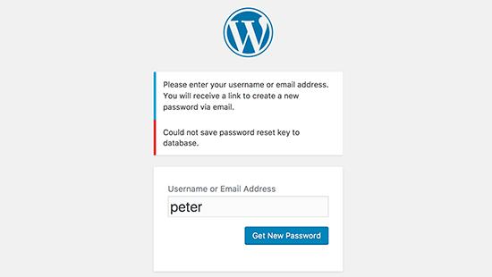 نحوه رفع ارور رمز عبور هنگام ورود به وردپرس