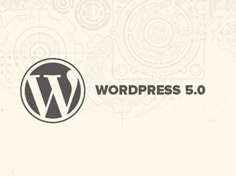 وردپرس نسخه 5.0