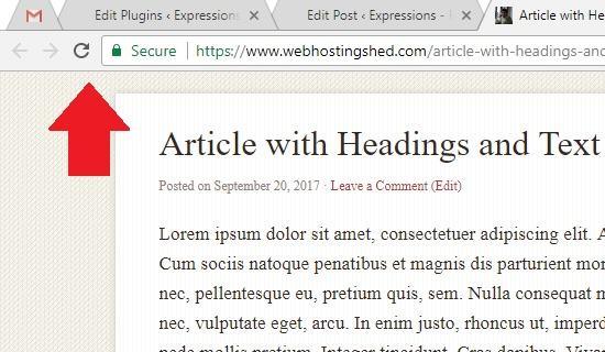 حذف هدر در صفحات خاص وردپرس