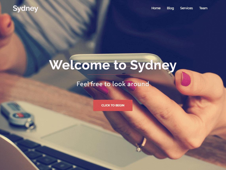 قالب وردپرس تک صفحه ای Sydney