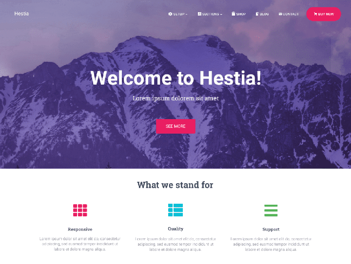 قالب وردپرس تک صفحه ای Hestia