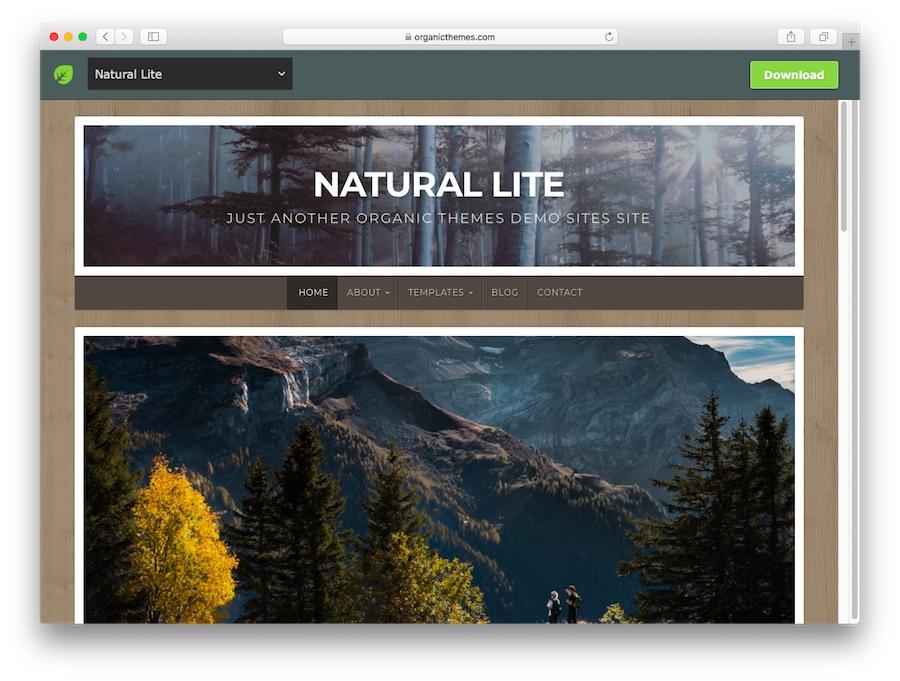 قالب Natural Lite