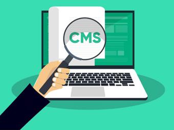 تشخیص CMS سایت
